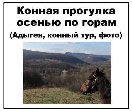 Конная прогулка осенью по горам